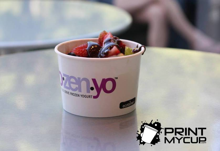 Frozenyo Franchise 2 www.printmycup.com yogurt and gelato supplies